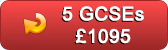 5 GCSES for only £1095